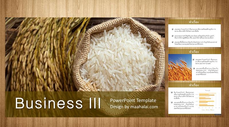 แจกฟรีธีม PowerPoint Business III พรีเซนท์งานธุรกิจและการเกษตร